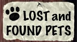 Lost and Found Pets in York Pennsylvania!